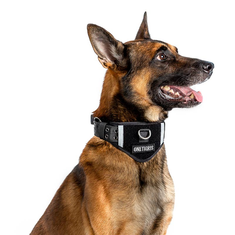 OneTigris Tactical Nylon Dog Collar Padded Collar With Patch Space