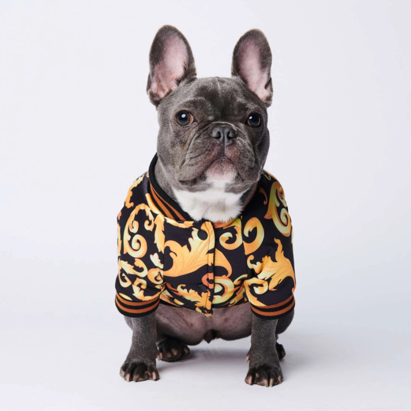Suprepet Одежда для собак Французский бульдог золотая вышивка
