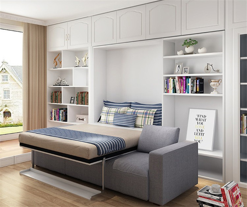 Murphy Bed Sofa And Shelf