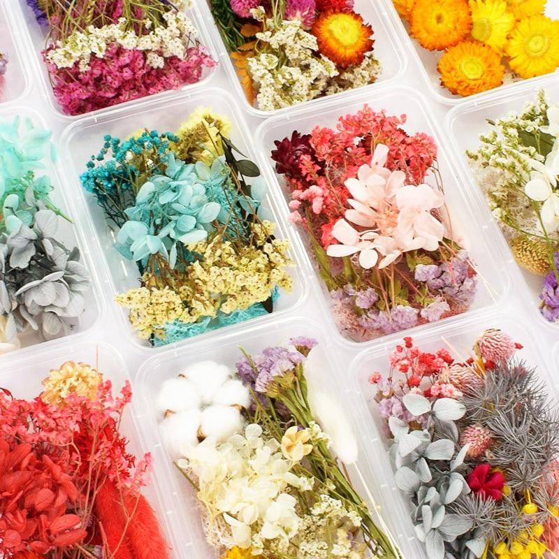 Pode escolher plantas secas flor real para aromaterapia vela resina epóxi pingente colar jóias fazendo artesanato diyaccessories