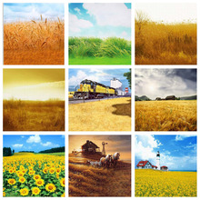 Photography Background Autumn Scenic Rural Farm Gold Yellow Wheat Field Haystack Wedding Children Portrait Backdrop Photo Studio