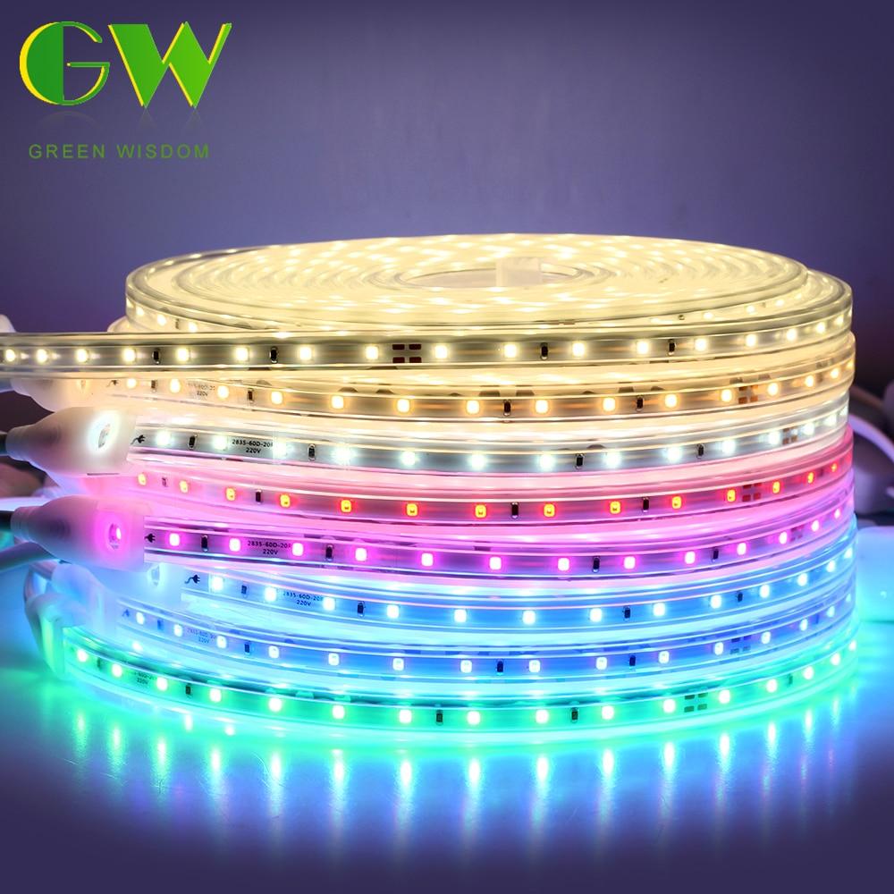 2835 Flexible LED Strip Light IP67 Waterproof 220V Neon Ribbon High Brightness LED Tape With EU Power Plug 1M/2M/5M/10M/15M/20M