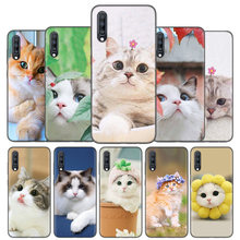 Silicone Case Cover For Samsung Galaxy A50 A80 A70 A60 A40 A30 A20 A20e A10 A9 A8 A7 A6 Plus 2018 Note 10 9 8 Cute Pet Cats Capa(China)