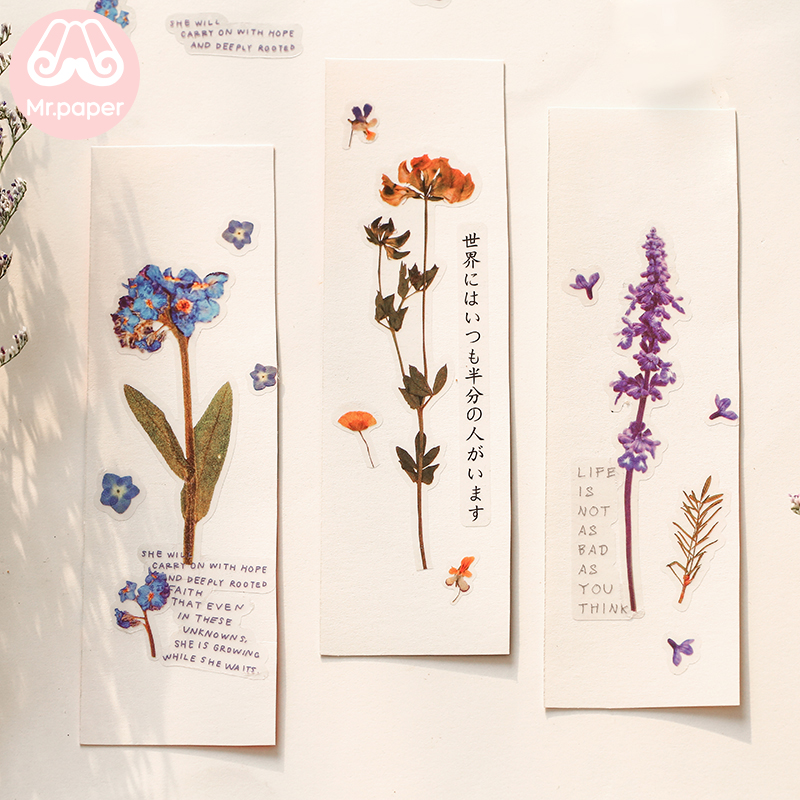 Mr.Paper 12 Designs Natural Daisy Clover Japanese Words Stickers Transparent PET Material Flowers Leaves Plants Deco Stickers 4
