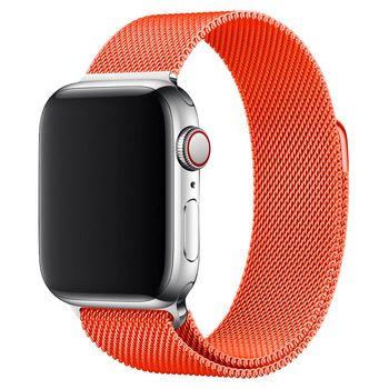 Milanese Band for Apple Watch 1