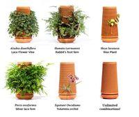Terraplanterss Pot d\'argile paresseux arrosage automatique céramique poterie Pots de fleurs pour plantes paresseux terraplanteur nid d\'abeille Pot de fleurs
