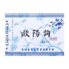 Beginner Students Regular Script Kaiti Chinese Calligraphy Water Writing Cloth DEO