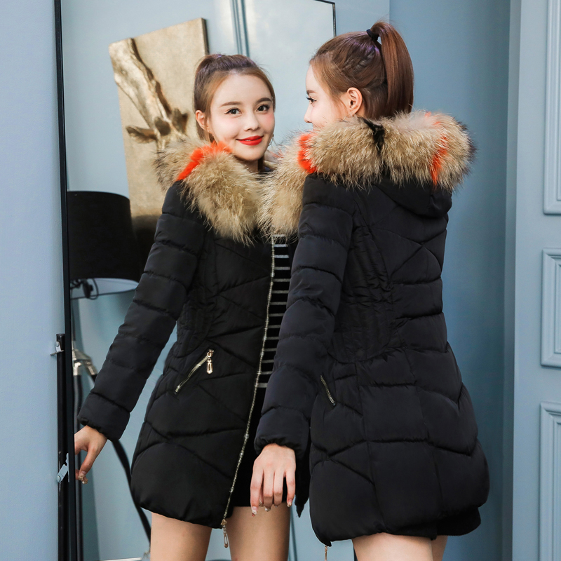 Women's Down Jacket Fashion 2019 Winter Jacket Female Long Section New Korean Version Of Racoon Large Fur Collar Slim Jacket