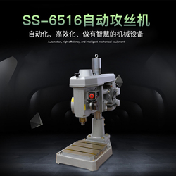 Double lion brand SS6516 automatic tapping machine drilling and tapping machine Threading machine wire tapping machine