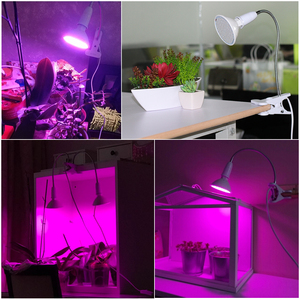 Image 5 - 220V Phytolamp E27 Full Spectrum LED Grow Light Flexible Metal Hose Clip on Growing Lights Indoor Phyto Lamps for Plants Flowers