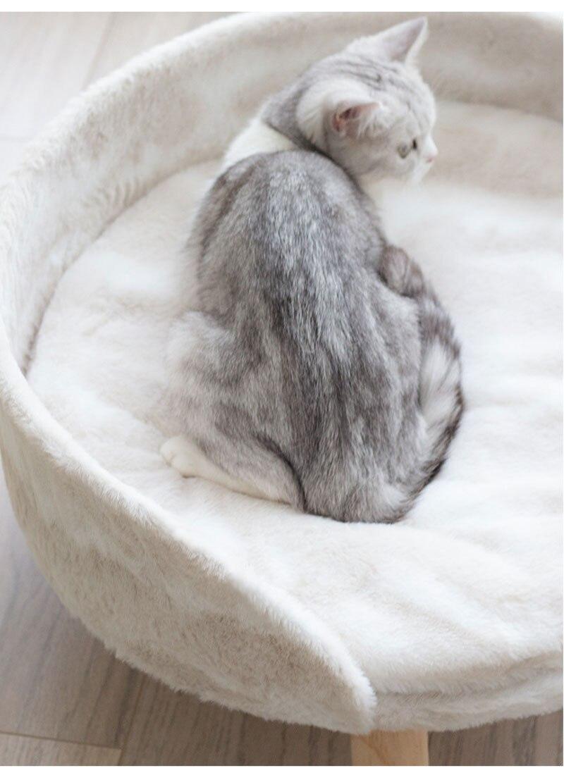 cat-sofa_21