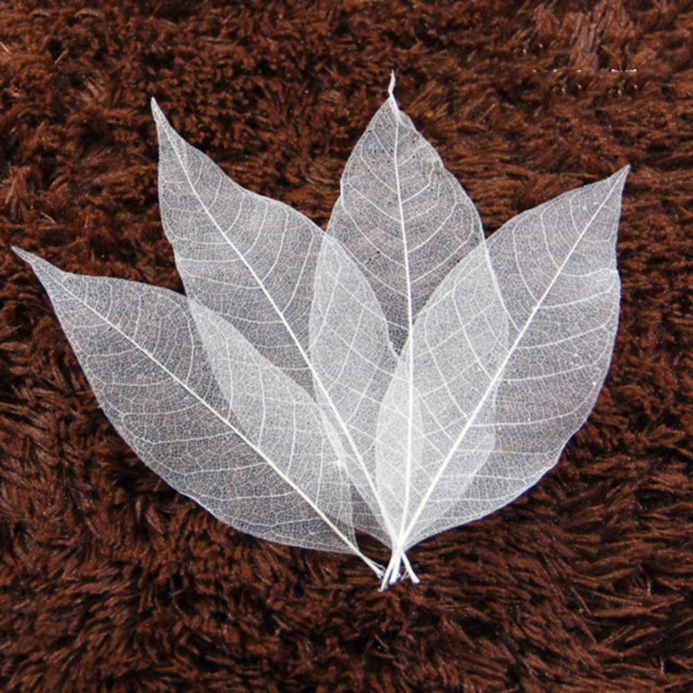 100 шт., карта для скрапбукинга с листьями магнолии, DIY ремесло, используемое для украшения карт, пакеты для свечей