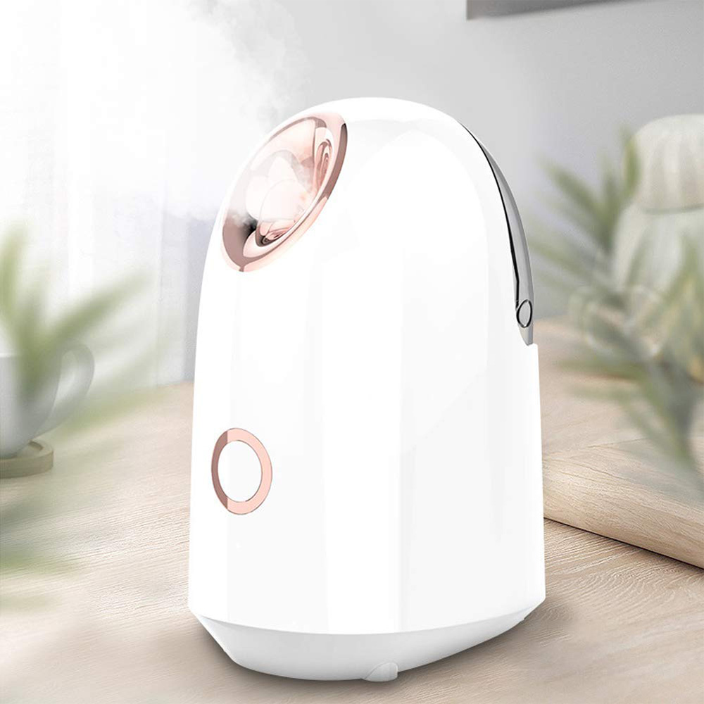 USB Rechargable Ultrasonic Humidifier Air Diffuser Handheld Deep Cleaning Facial Cleaner for Skin Care Facial Beauty Tools