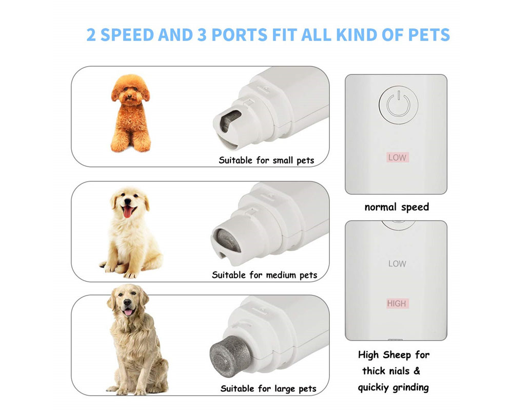 Suprimentos para animais de estimação elétrica prego