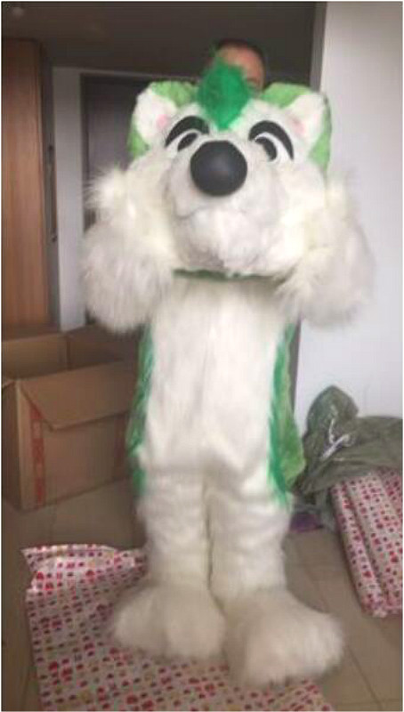 2019 Dog Mascot Costume Suit Adult Costume Party Fancy Dress Outfit New