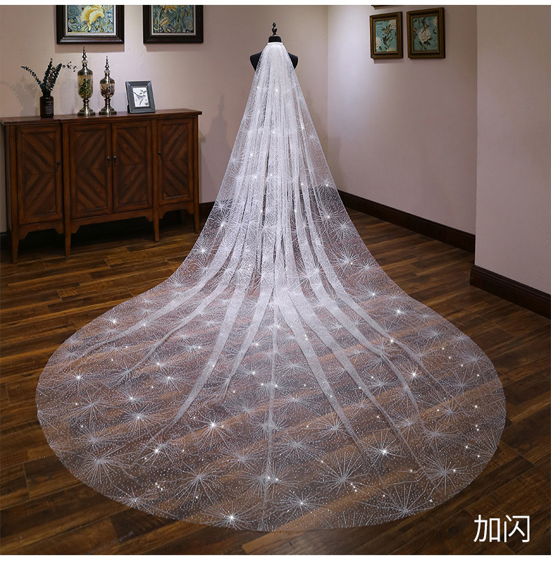Bride Wedding Veil Wedding Long Section White Polaris Trailing Long Bride Wedding Veil Accessories TS264 - 2