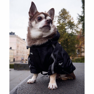 Image 3 - Luxury Winter Small Dog Clothes For Small Large Dogs French Bulldog Clothes Clothing For Dogs Coat The Dog Face Jacket Chihuahua