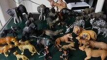 Original genuine wild zoo farm African Savanna lion animal king bird series leopard cat panther Jaguar model toys children gift