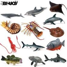 Модель осьминога, Акула, парусник, модель осьминога, фигурка морской жизни, образовательная фигура, океан, с животными из ПВХ, игрушка для детей, Детский декор, подарок