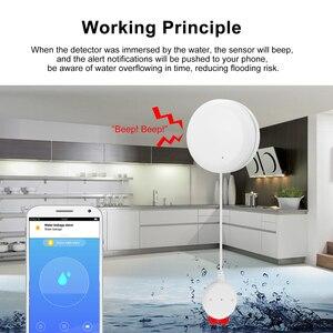 Image 5 - Tuya akıllı WIFI su kaçak sensörü su kaçak saldırı dedektörü taşma alarmı ile uyumlu Alexa Google ev IFTTT Tuya
