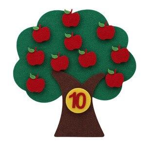 Montessori Teaching Aids Apple