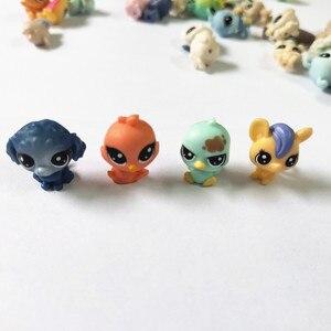 Image 3 - Figurines danimaux domestiques, jouet daction de marché, 50 pièces/sac 1 à 2cm, jouet chat mignon, cheval, lapin, enfant