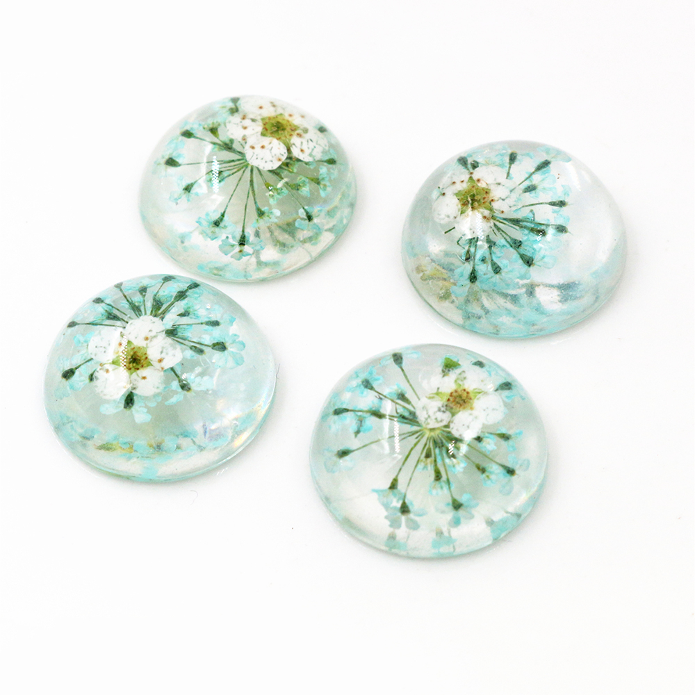 New Fashion 10pcs 20mm Sky Blue Natural Dried White Chrysanthemum Flowers Cabochons Cameo-V3-04