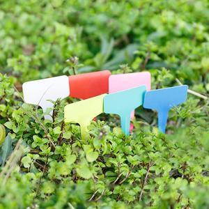 Image 4 - 16 قطعة البلاستيك T نوع حديقة مصنع تسميات البستنة زهرة الكلمات الدفيئة الحضانة صينية شتلات علامات مزيج الألوان