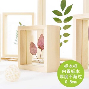Nordic Style Dried Flower Leaves DIY Pressed Plant Picture Frames Double Side Glass Wooden Frame Wall Art Home Decor 1 Piece