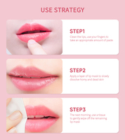 Korea Lip Sleeping Mask Night Sleep Maintenance Moistened Lip Balm the Pink Lips Bleaching Cream Nourish Protect Lips Care TSLM1 5