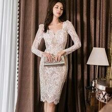 Plus Size Women V-neck Long Sleeve Sheath Women's Wrap Bodycon See Through Dress Mini Dress Autumn Korean Style Sexy Club Dress