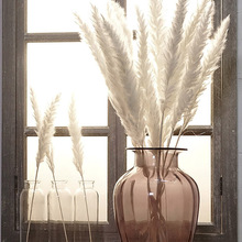 Fake Flower Pampas-Grass Artificial-Plants-Branch Home-Decoration Wedding Bulrush Natural