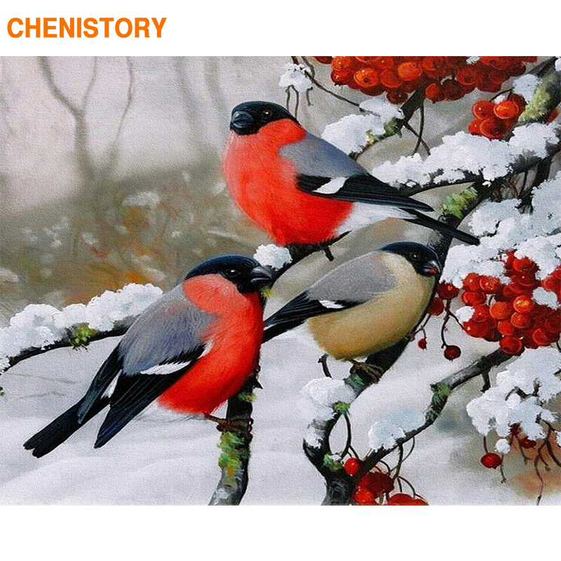CHENISTORY Frame Picture By Numbers Birds Diy Acrylic Paint On Canvas Painting By Numbers Snow For Home Decors Gift Wall Artwork