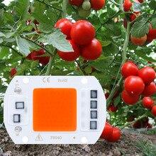 LED 성장 AC220V 10W 20W 30W 50W COB 칩 Phyto 램프 실내 식물 묘종에 대 한 전체 스펙트럼 성장 및 꽃 성장 Fitola