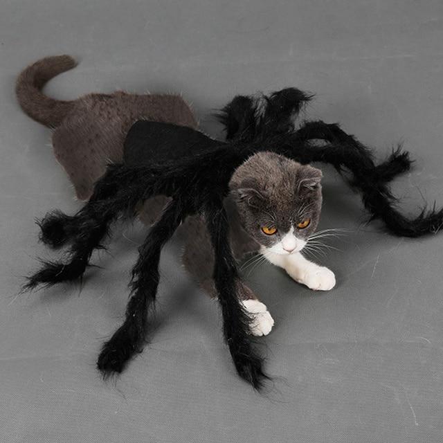 Vêtements de carnaval Halloween araignée | Décoration de Festival pour chiens et chats, déguisement de fête noir, Costume en peluche daraignée pour Simulation