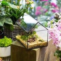 Ncyp ガラス植木鉢卓上盆栽家形ガラステラリウム容器多肉植物幾何学的なガラスプランター植木鉢