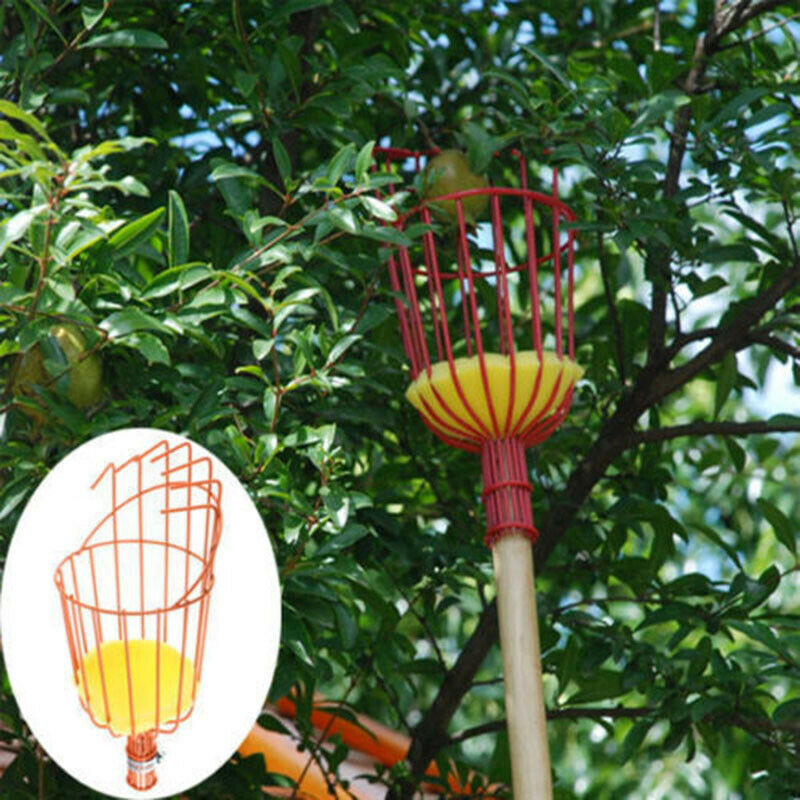 Fruit Picker Basket Catcher Picking Fresh Orange Garden Tools For Broom Pole Stick PAK55