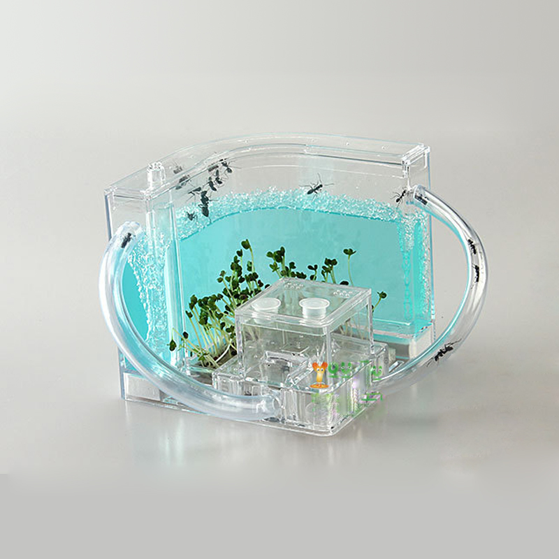 Ant Farm Acrylic Insect test tube Moisture big space Ant Nest ants Villa House Ants Ecological Workshop 6 colors