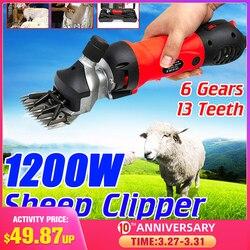 1200W 220V/220 240V 6 biegów prędkości elektryczne owce kozy nożyce Clipper Farm nożyce kuter wełny podnośniki maszyna tnąca + Box|Nożyczki|Narzędzia -