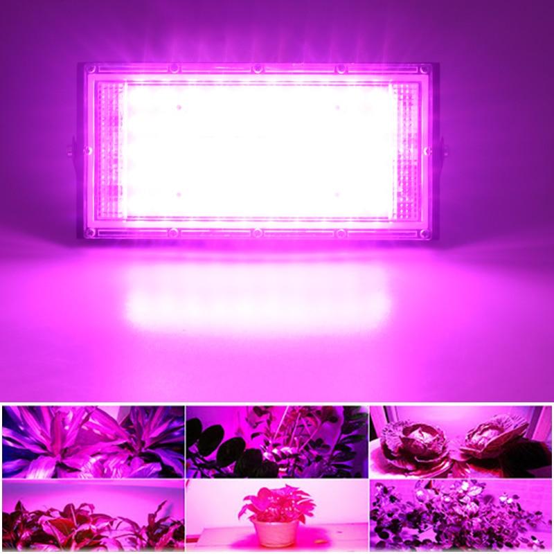 LED Grow Light Phyto Lamp AC 220V 50W LED Full Spectrum Floodlight Indoor Outdoor Greenhouse Plant Hydroponic Plant Spotlight 3