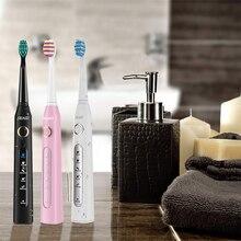 Seago SG 507 brosse à dents électrique onde sonique Vibration propre blanchiment des dents 3 têtes de brosse de rechange 5 Modes USB Rechargeable