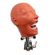 Фантомная головка модель для стоматолога образование скамейка