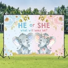 Décor de fête «it's A Boy or Girl», toile de fond de photographie, décorations de fête prénatale