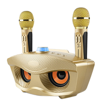 HOT SD306 Dual Bluetooth Speaker with 2 Wireless Microphones Outdoor Family KTV Stereo Mic Big Sound 20W