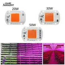 LED 식물 성장 램프 COB 칩 전체 스펙트럼 AC 220V 110V 20W 30W 50W 온실 실내 식물 묘목 및 꽃 성장