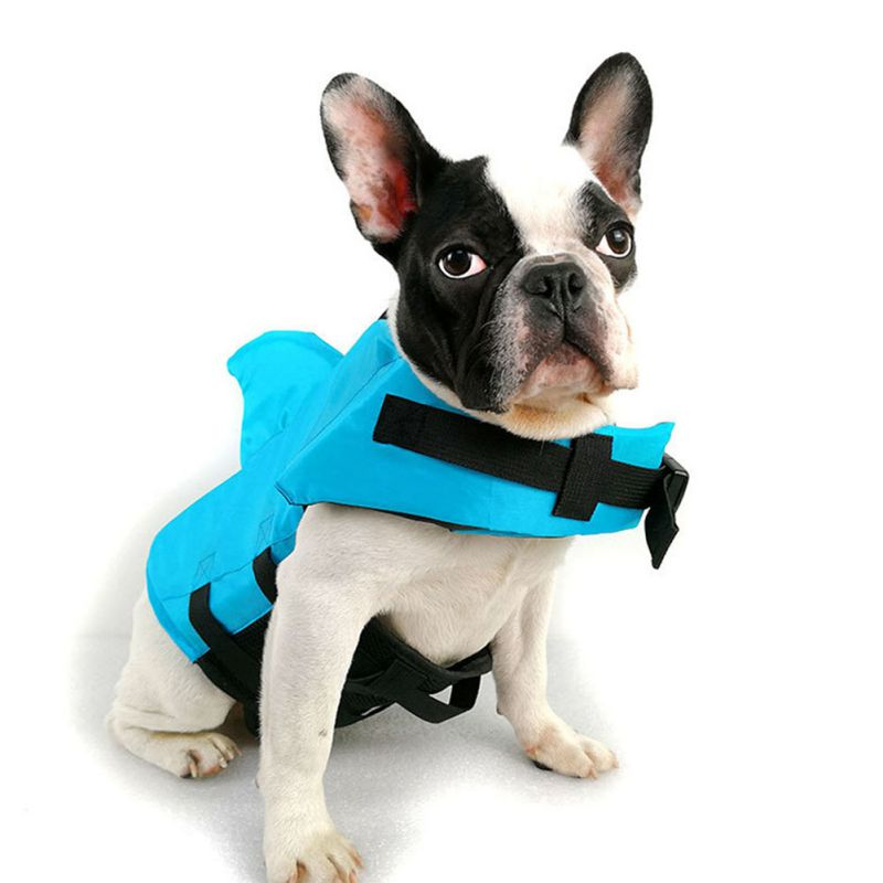 dog shark life jacket