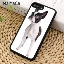 MaiYaCa Animal lindo gato perro boston terrier perro teléfono funda para iPhone 5 5 5 6 6 7 8 plus 11 Pro X XR XS Max Samsung Galaxy S7 S8 S9(China)