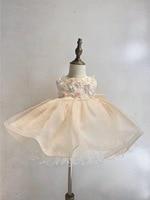 Girl's Clothes Children's Graduation Revelry Luxurious Dress Flower Formal Dresses Lace Material Newborn Baptism Dress