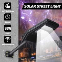 Commercial LED Solar Street Light Outdoor Garden Yard Lamp Remote Control Timer Security Lamp Waterproof Street Lights 30W