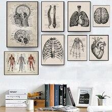 Arte de pared de anatomía humana, pósteres e impresiones Vintage de Hospital, decoración de oficina, esqueleto, pintura anatómica en lienzo de calaveras